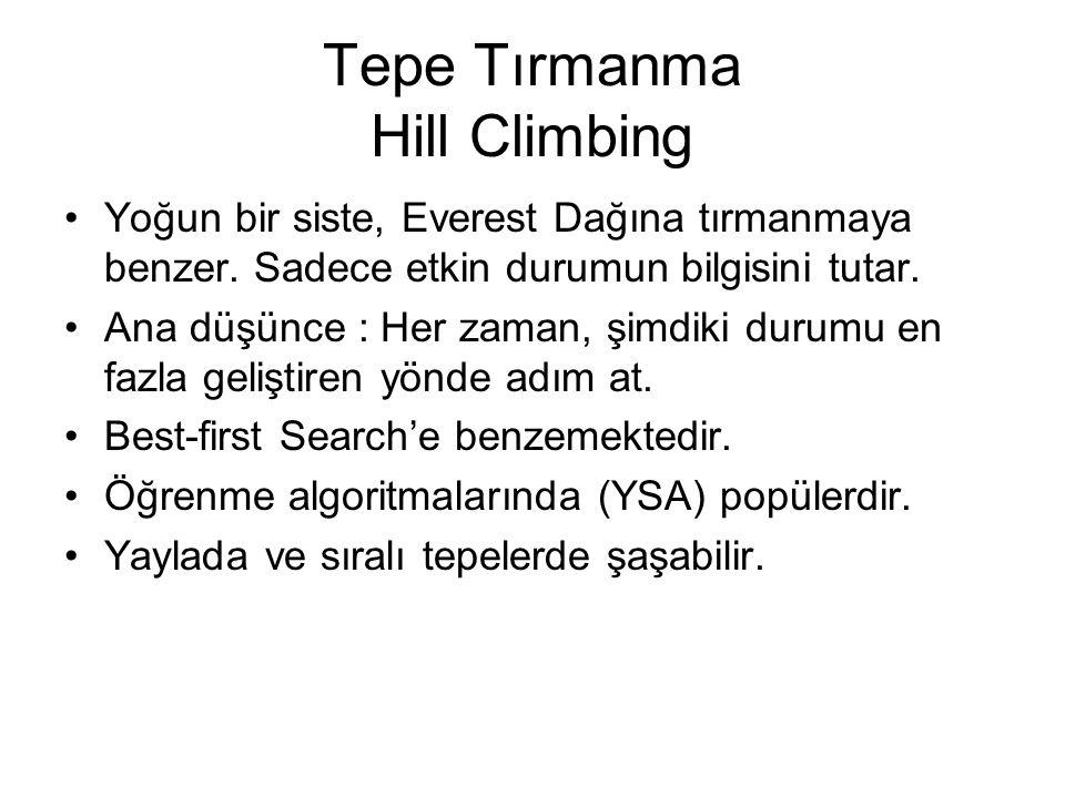 Tepe Tırmanma Hill Climbing Yoğun bir siste, Everest Dağına tırmanmaya benzer. Sadece etkin durumun bilgisini tutar. Ana düşünce : Her zaman, şimdiki