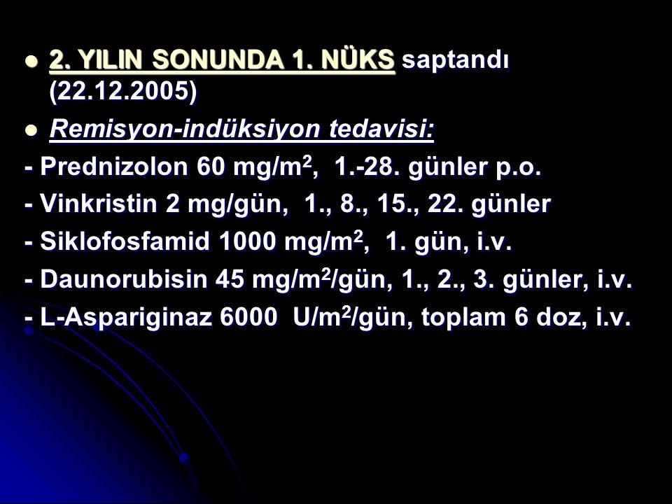 2. YILIN SONUNDA 1. NÜKS saptandı (22.12.2005) 2. YILIN SONUNDA 1. NÜKS saptandı (22.12.2005) Remisyon-indüksiyon tedavisi: Remisyon-indüksiyon tedavi