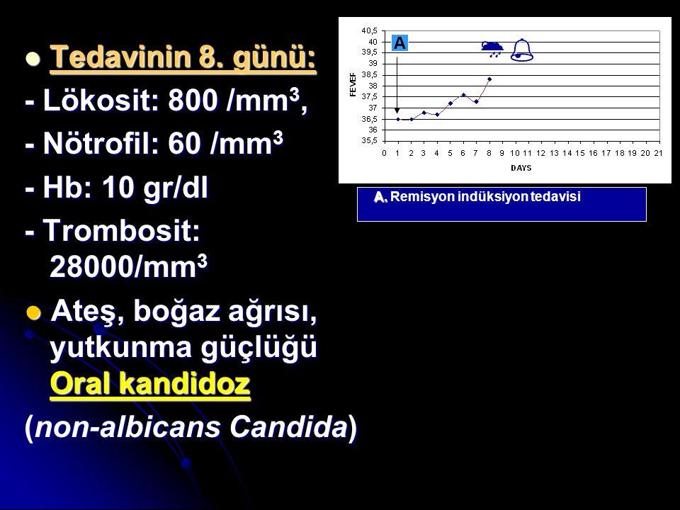 Tedavinin 8. günü: Tedavinin 8. günü: - Lökosit: 800 /mm 3, - Nötrofil: 60 /mm 3 - Hb: 10 gr/dl - Trombosit: 28000/mm 3 ● Ateş, boğaz ağrısı, yutkunma