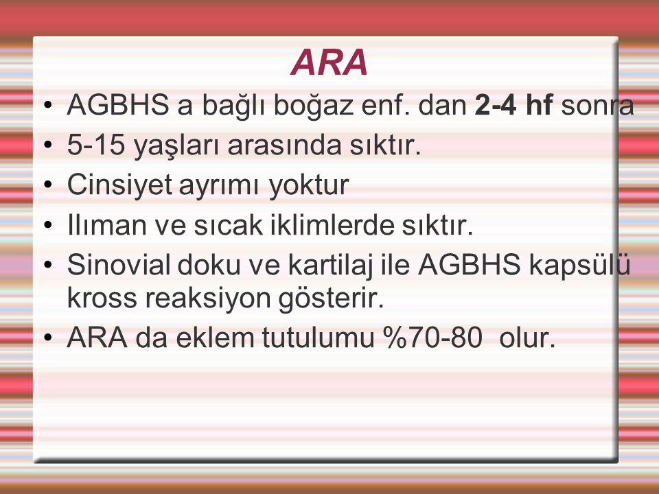 ARA AGBHS a bağlı boğaz enf.dan 2-4 hf sonra 5-15 yaşları arasında sıktır.