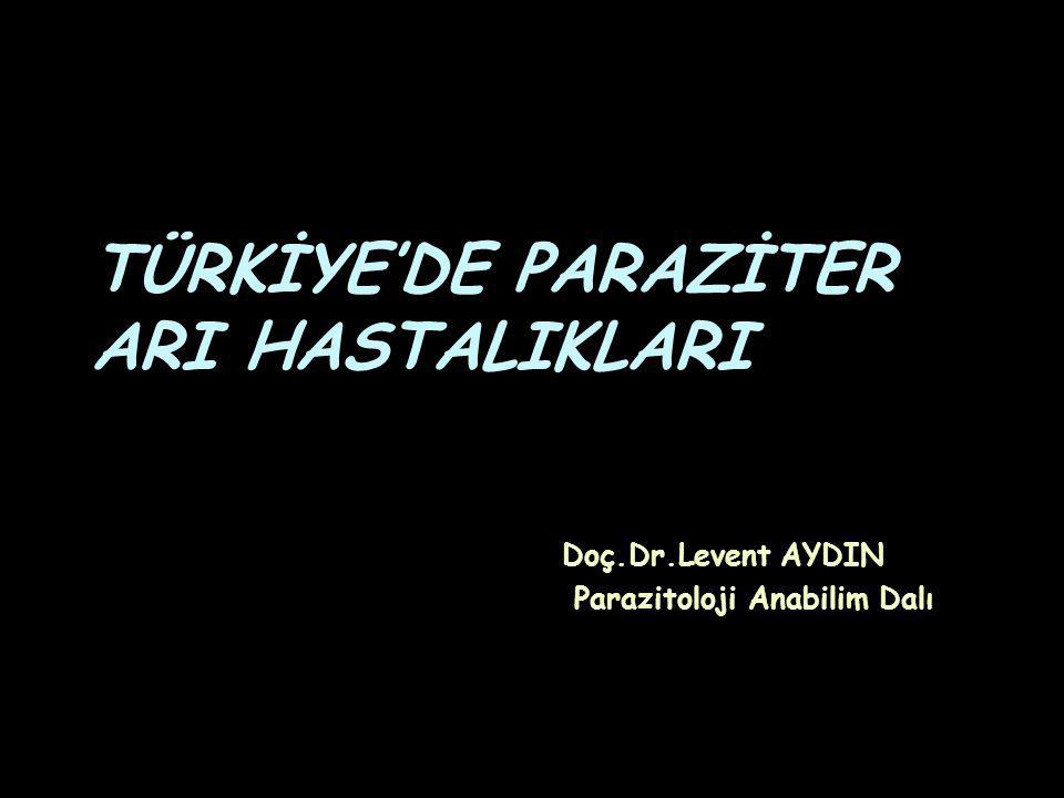 TÜRKİYE'DE PARAZİTER ARI HASTALIKLARI Doç.Dr.Levent AYDIN Parazitoloji Anabilim Dalı
