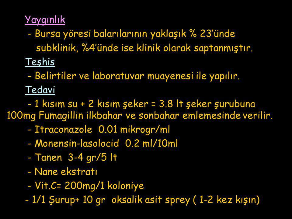Yaygınlık - Bursa yöresi balarılarının yaklaşık % 23'ünde subklinik, %4'ünde ise klinik olarak saptanmıştır.