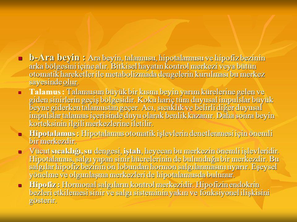 a.Sempatik Sistem : Sempatik sistem, özellikle organizma zor durumlarda kaldığı zaman etkilidir.