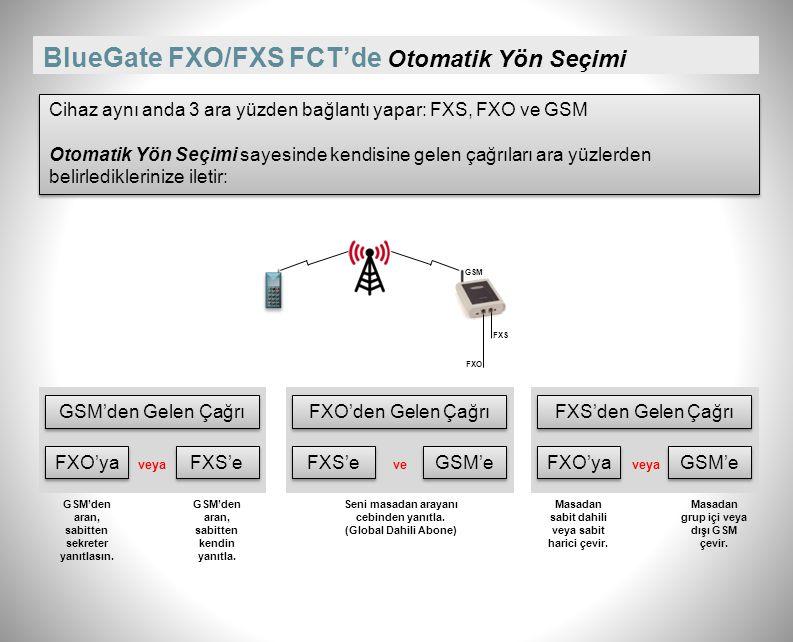 BlueGate FXO/FXS FCT'nin Global Dahili Abone özelliği ile masanızdaki dahili telefonunuzu cebinizde taşıyın. PBX Analog Dahili Hat 0212x 053x Harici: