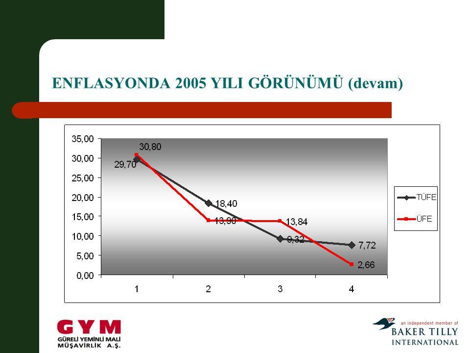 ENFLASYONDA 2005 YILI GÖRÜNÜMÜ (devam)