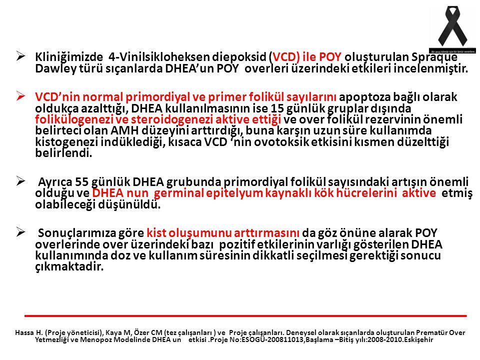  Kliniğimizde 4-Vinilsikloheksen diepoksid (VCD) ile POY oluşturulan Spraque Dawley türü sıçanlarda DHEA'un POY overleri üzerindeki etkileri incelenm