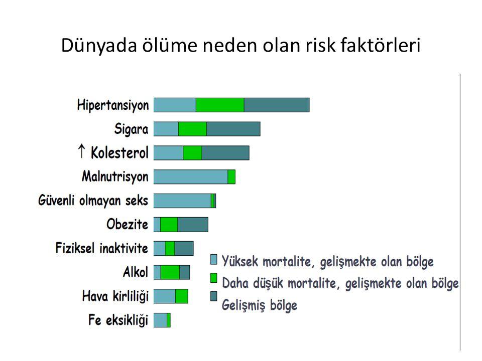 Dünyada ölüme neden olan risk faktörleri