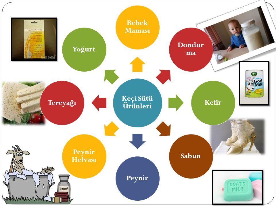 Keçi Sütü Ürünleri Bebek Maması Dondur ma KefirSabunPeynir Peynir Helvası Tereya ğ ıYo ğ urt