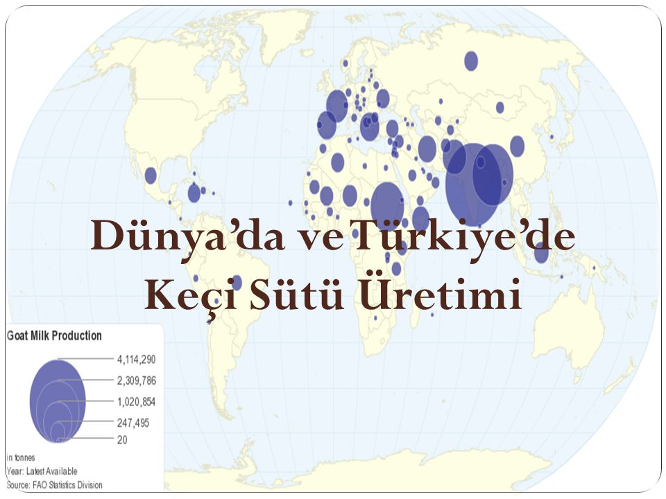 Dünya'da ve Türkiye'de Keçi Sütü Üretimi