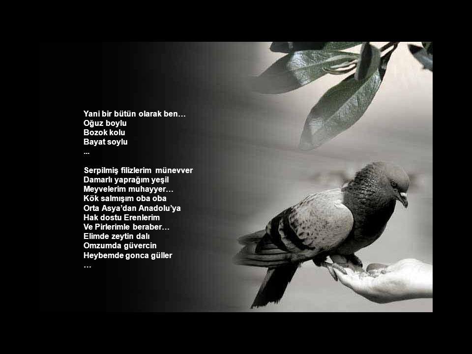 Çakallı… Hatırlı mı hatırlı Saygılı mı saygılı Âlime taş çıkartır Akıllı mı akıllı...