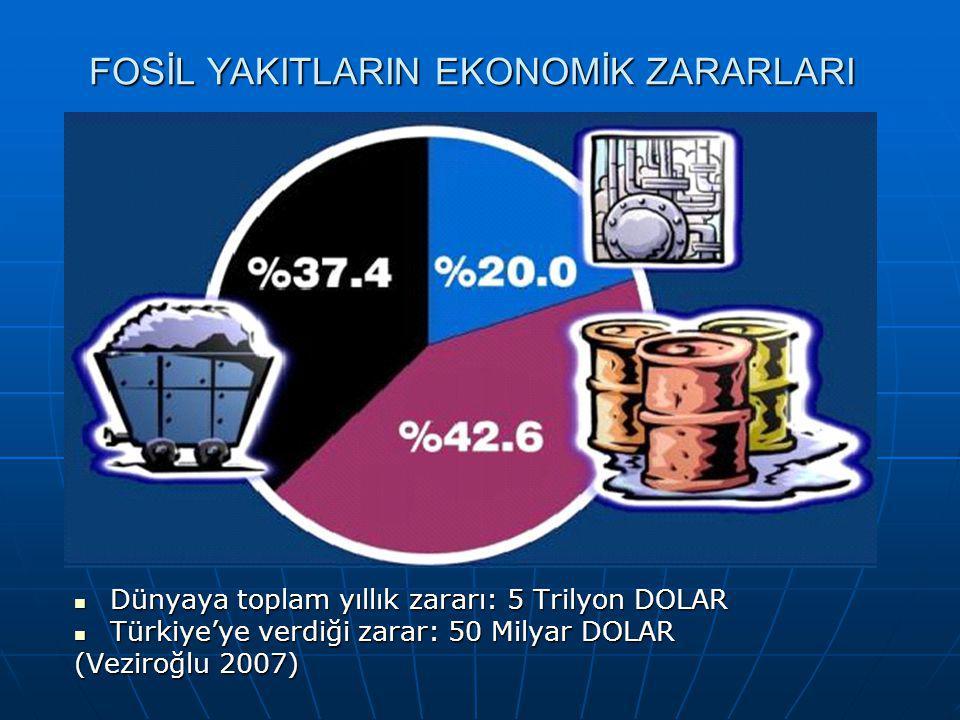 Türkiye Döviz Geliri, Enerji İthalatı ve Toplam İthalat (Veziroğlu, 2007) Enerji İthalatı : Petrol, Doğalgaz, Kömür Kaynak: 2005 yılına kadar değerler TÜİK ve ETKB'den, ileriye yönelik tahminler ise DPT'nin ekonomide %5-6'lık büyüme tahminleri ve ETBK'nın enerji talep artış tahminlerine göre hesaplanmıştır.