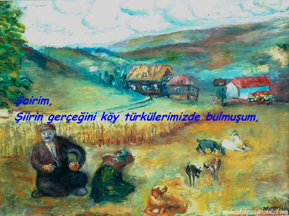 Şairim, Şiirin gerçeğini köy türkülerimizde bulmuşum,