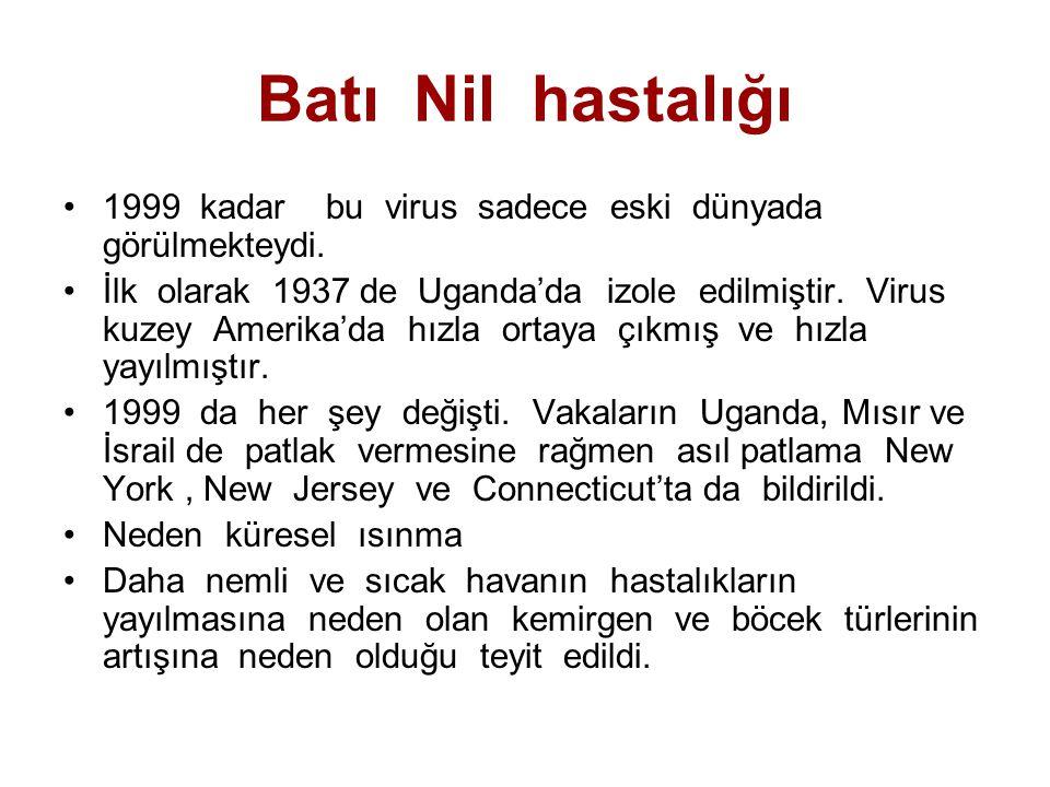 Batı Nil hastalığı 1999 kadar bu virus sadece eski dünyada görülmekteydi. İlk olarak 1937 de Uganda'da izole edilmiştir. Virus kuzey Amerika'da hızla