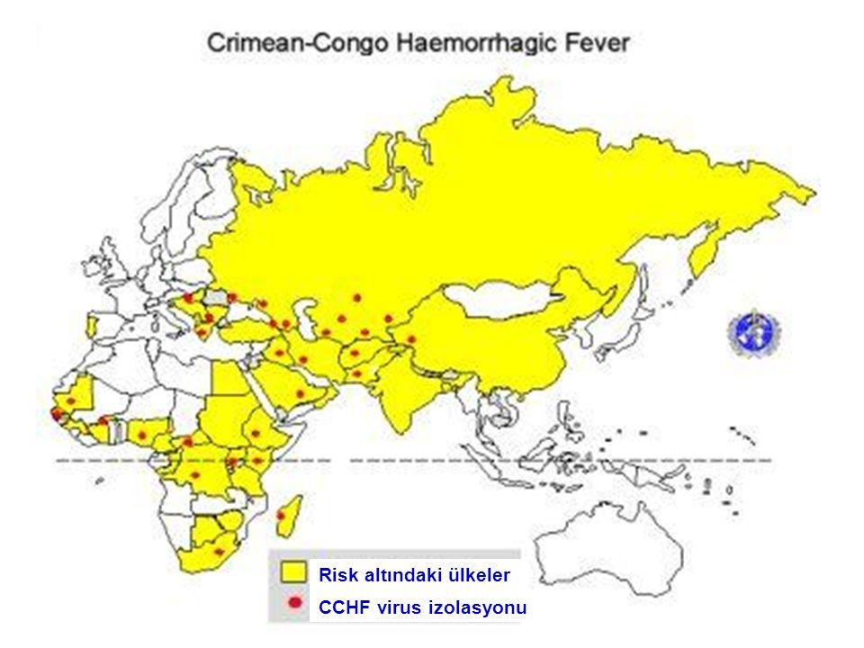 Risk altındaki ülkeler CCHF virus izolasyonu