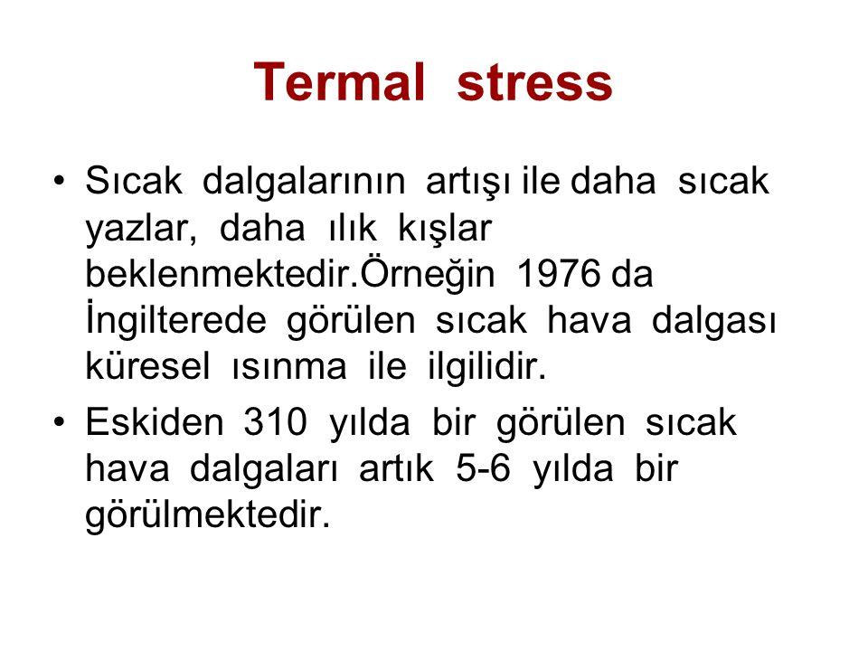 Termal stress Sıcak dalgalarının artışı ile daha sıcak yazlar, daha ılık kışlar beklenmektedir.Örneğin 1976 da İngilterede görülen sıcak hava dalgası
