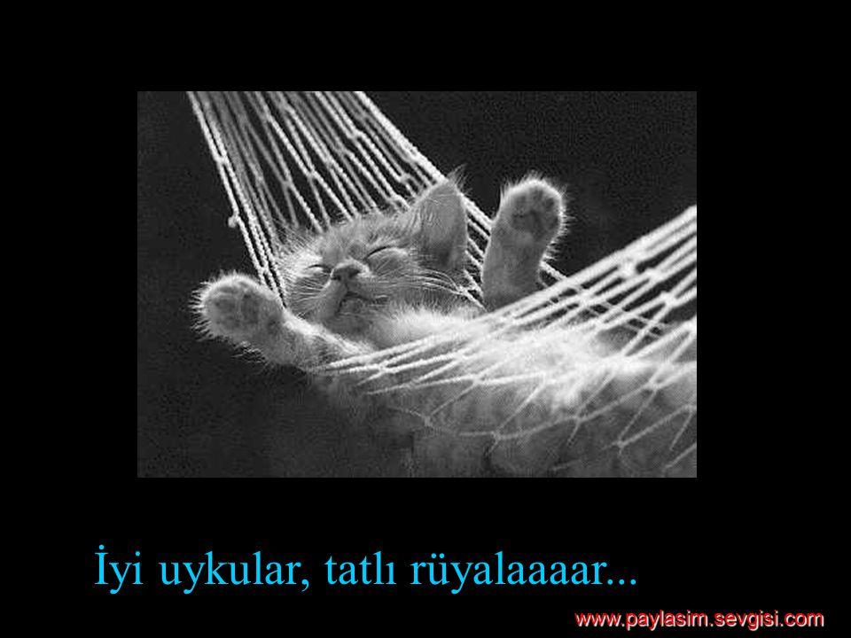 İyi uykular, tatlı rüyalaaaar... www.paylasim.sevgisi.com