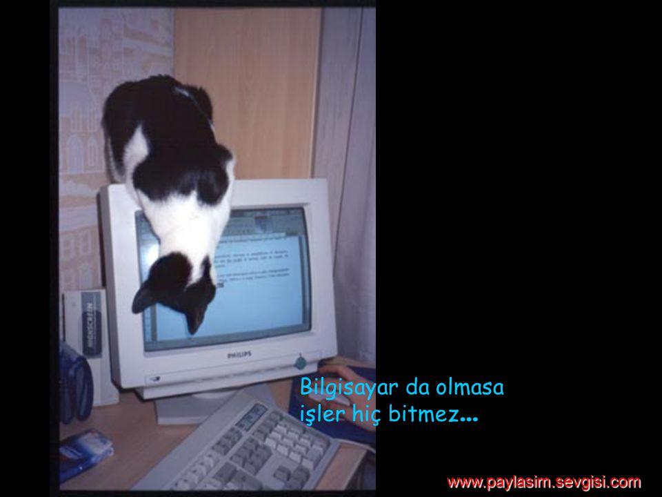 Bilgisayar da olmasa işler hiç bitmez … www.paylasim.sevgisi.com