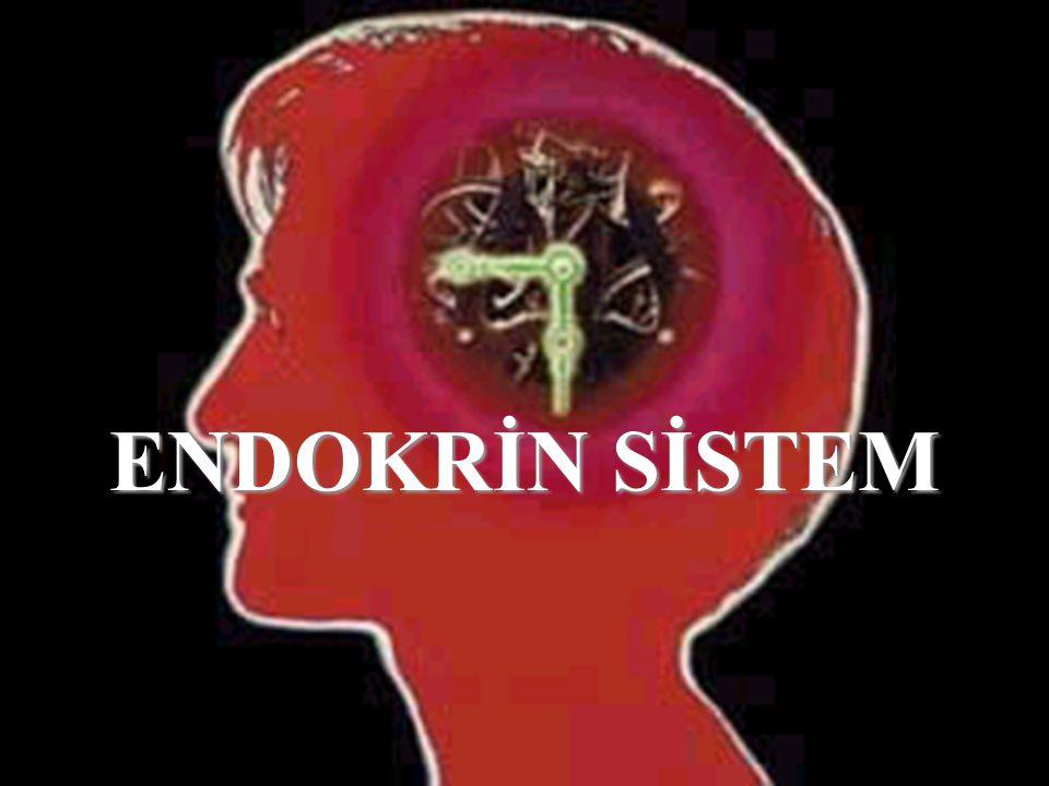 OVER HORMONLARI Östrojenler:Östrojenler: FSH ve LH etkisiyle salınır.