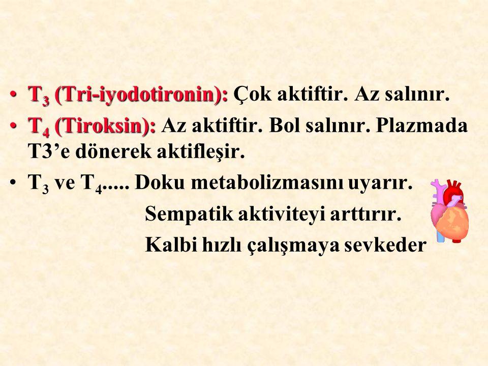 T 3 (Tri-iyodotironin):T 3 (Tri-iyodotironin): Çok aktiftir. Az salınır. T 4 (Tiroksin):T 4 (Tiroksin): Az aktiftir. Bol salınır. Plazmada T3'e dönere