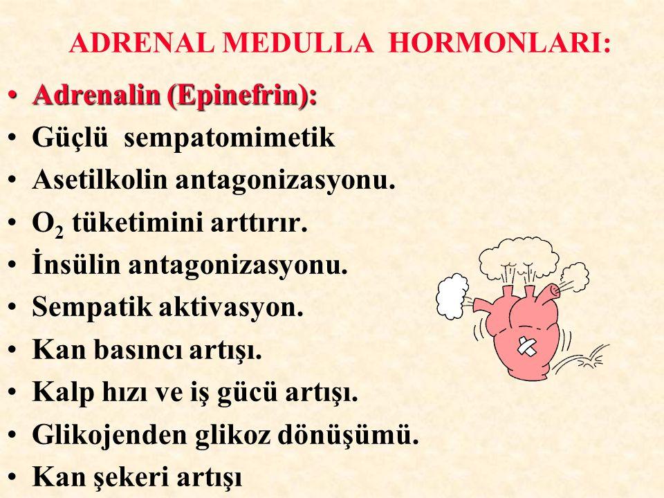 Adrenalin (Epinefrin):Adrenalin (Epinefrin): Güçlü sempatomimetik Asetilkolin antagonizasyonu. O 2 tüketimini arttırır. İnsülin antagonizasyonu. Sempa