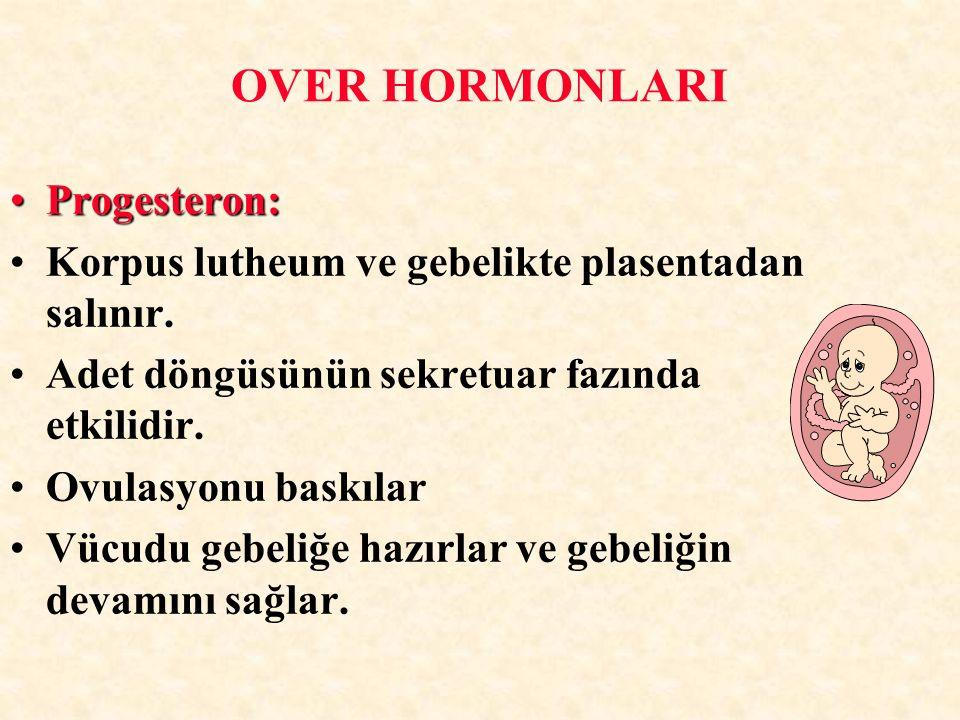 Progesteron:Progesteron: Korpus lutheum ve gebelikte plasentadan salınır. Adet döngüsünün sekretuar fazında etkilidir. Ovulasyonu baskılar Vücudu gebe