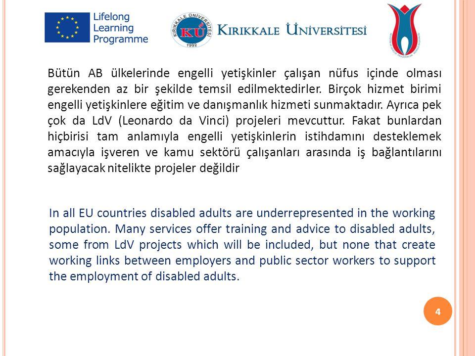 Bütün AB ülkelerinde engelli yetişkinler çalışan nüfus içinde olması gerekenden az bir şekilde temsil edilmektedirler. Birçok hizmet birimi engelli ye