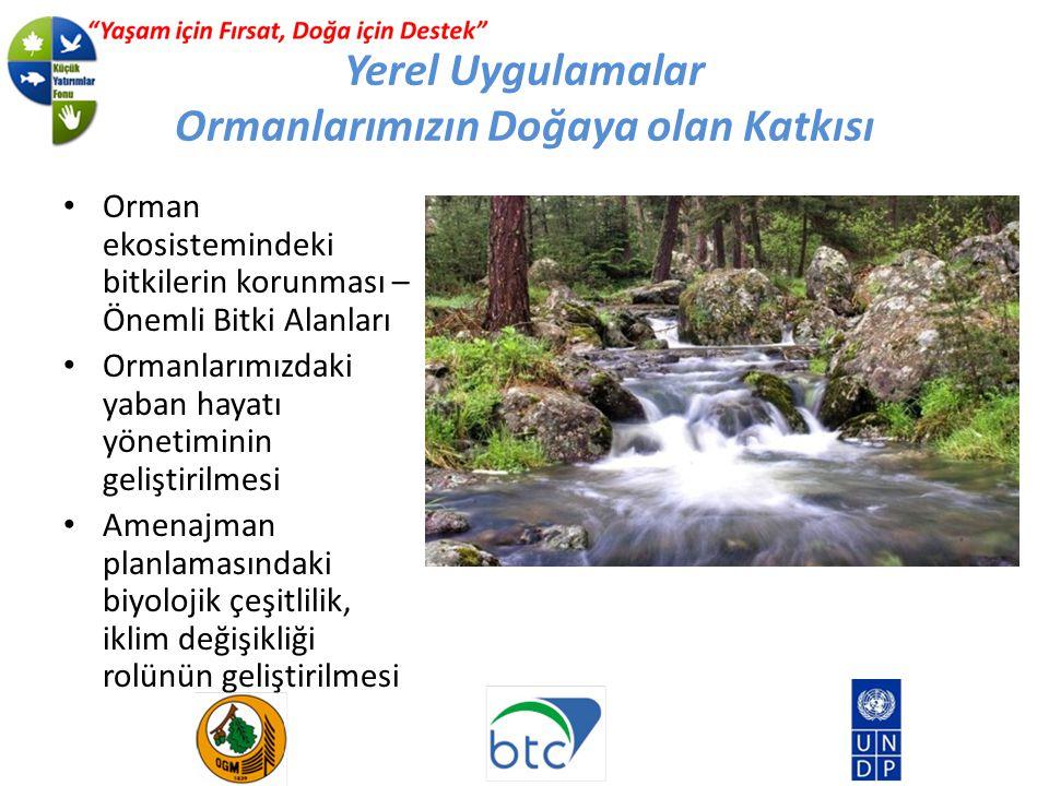 Yerel Uygulamalar Ormanlarımızın Doğaya olan Katkısı Orman ekosistemindeki bitkilerin korunması – Önemli Bitki Alanları Ormanlarımızdaki yaban hayatı yönetiminin geliştirilmesi Amenajman planlamasındaki biyolojik çeşitlilik, iklim değişikliği rolünün geliştirilmesi