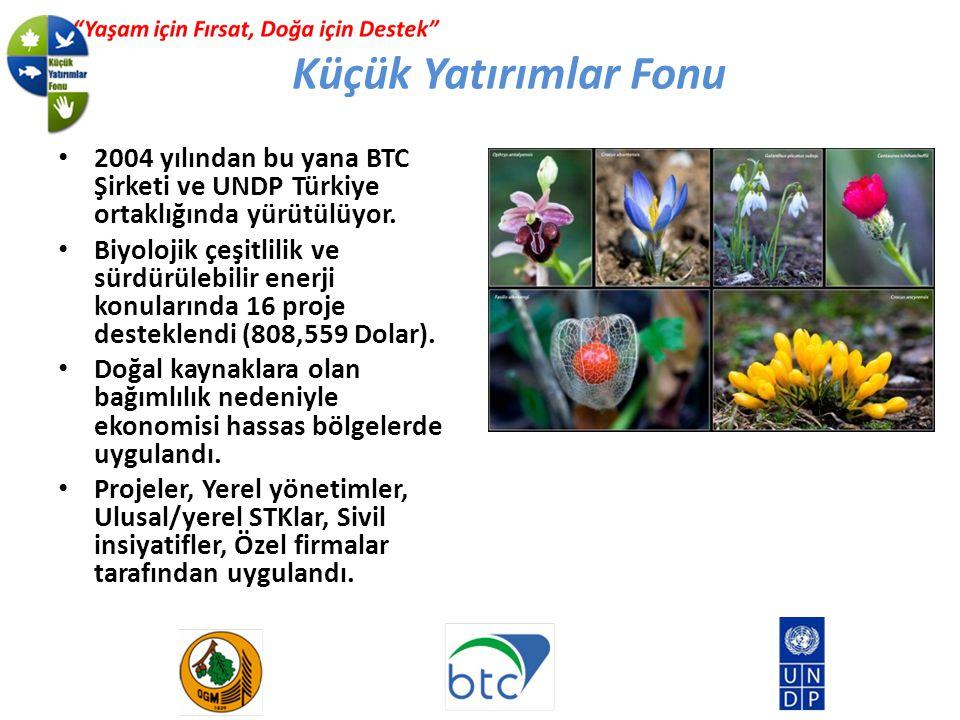 2004 yılından bu yana BTC Şirketi ve UNDP Türkiye ortaklığında yürütülüyor.