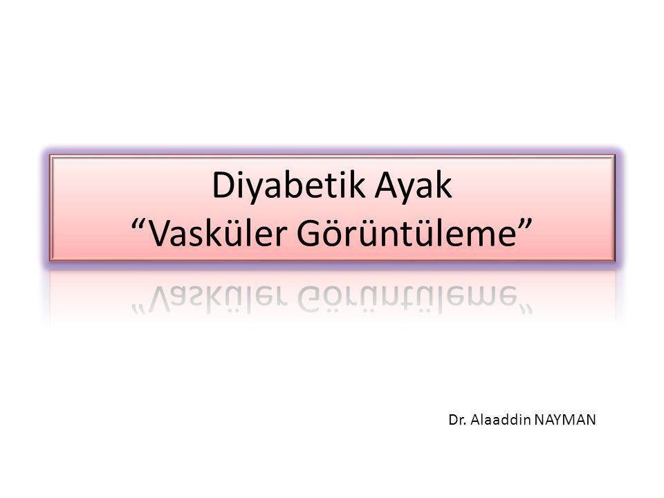 Dr. Alaaddin NAYMAN