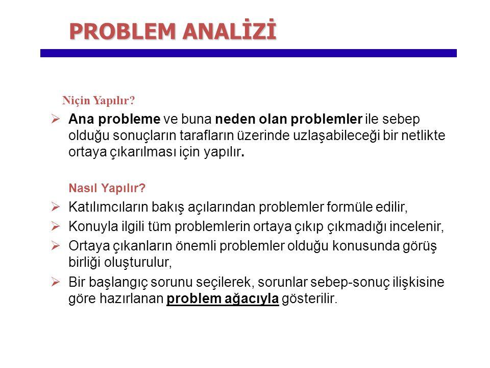 Niçin Yapılır?  Ana probleme ve buna neden olan problemler ile sebep olduğu sonuçların tarafların üzerinde uzlaşabileceği bir netlikte ortaya çıkarıl