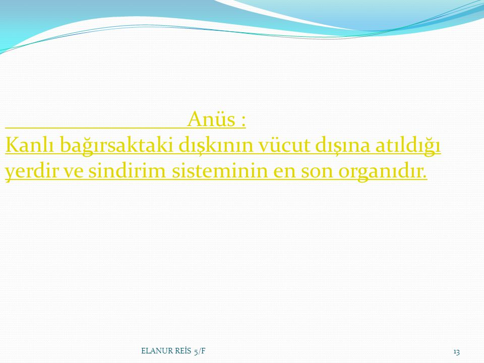 Anüs : Kanlı bağırsaktaki dışkının vücut dışına atıldığı yerdir ve sindirim sisteminin en son organıdır.