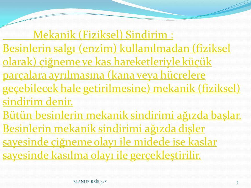 ELANUR REİS 5/F36