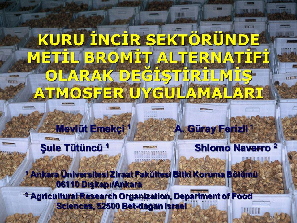 KURU İNCİR SEKTÖRÜNDE METİL BROMİT ALTERNATİFİ OLARAK DEĞİŞTİRİLMİŞ ATMOSFER UYGULAMALARI 1 Ankara Üniversitesi Ziraat Fakültesi Bitki Koruma Bölümü 06110 Dışkapı/Ankara 2 Agricultural Research Organization, Department of Food Sciences, 52500 Bet-dagan Israel Mevlüt Emekçi 1 A.