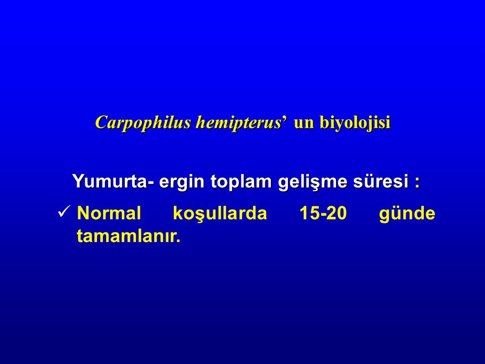 Carpophilus hemipterus' un biyolojisi Yumurta- ergin toplam gelişme süresi : Normal koşullarda 15-20 günde tamamlanır.