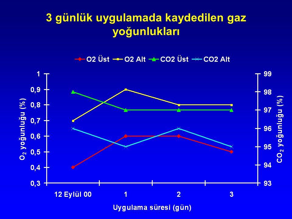 3 günlük uygulamada kaydedilen gaz yoğunlukları