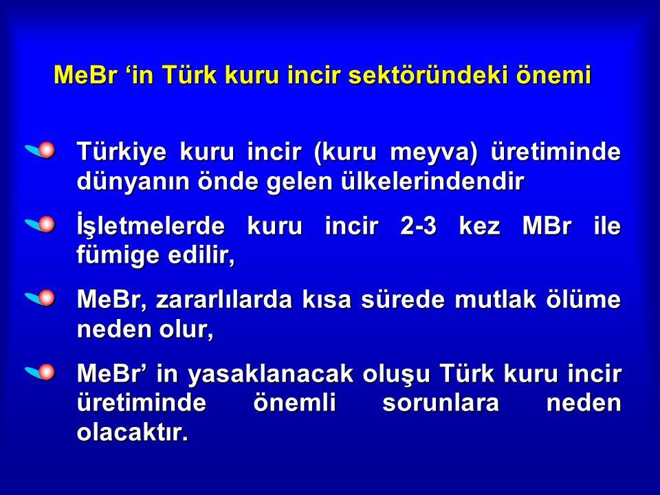 MeBr 'in Türk kuru incir sektöründeki önemi Türkiye kuru incir (kuru meyva) üretiminde dünyanın önde gelen ülkelerindendir İşletmelerde kuru incir 2-3 kez MBr ile fümige edilir, MeBr, zararlılarda kısa sürede mutlak ölüme neden olur, MeBr' in yasaklanacak oluşu Türk kuru incir üretiminde önemli sorunlara neden olacaktır.
