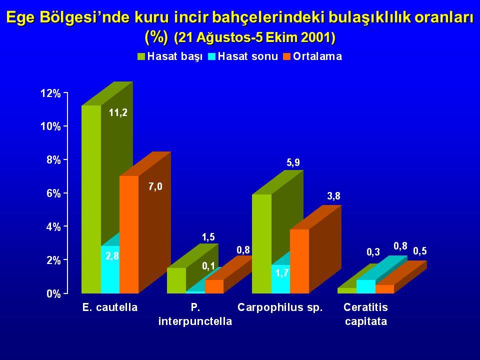 Ege Bölgesi'nde kuru incir bahçelerindeki bulaşıklılık oranları (%) (21 Ağustos-5 Ekim 2001)