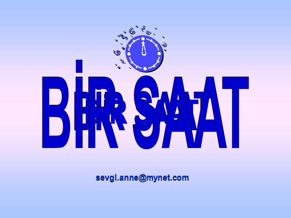 sevgi.anne@mynet.com