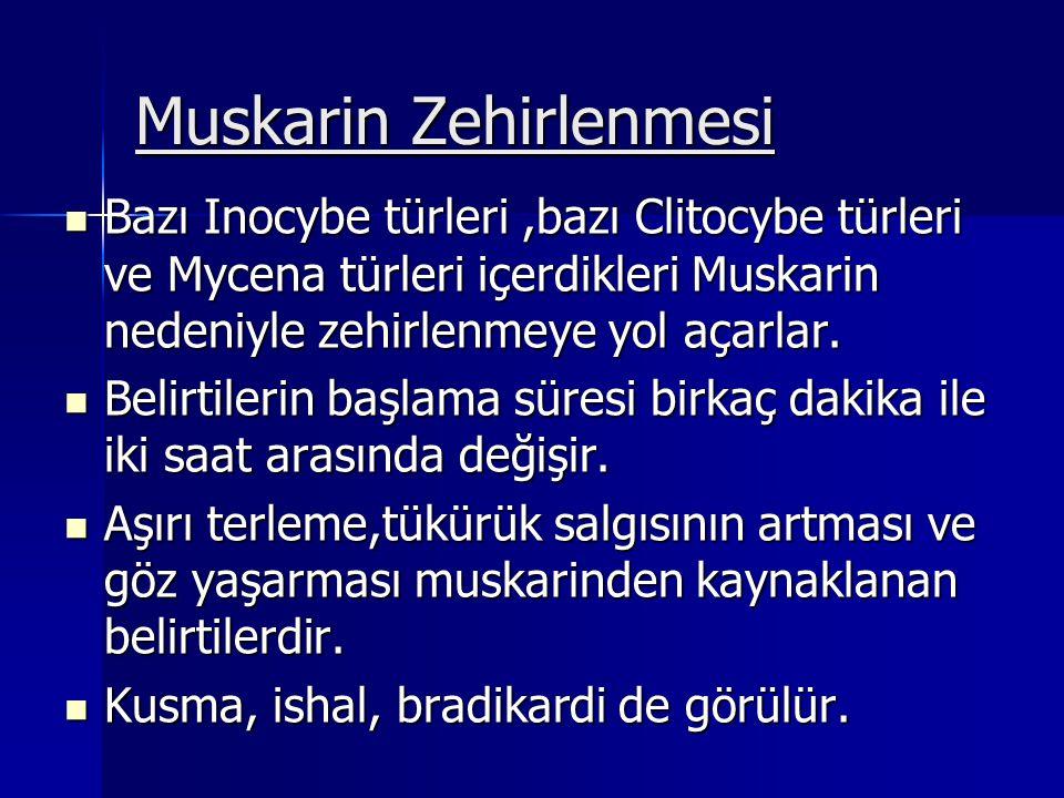 Muskarin Zehirlenmesi Bazı Inocybe türleri,bazı Clitocybe türleri ve Mycena türleri içerdikleri Muskarin nedeniyle zehirlenmeye yol açarlar.