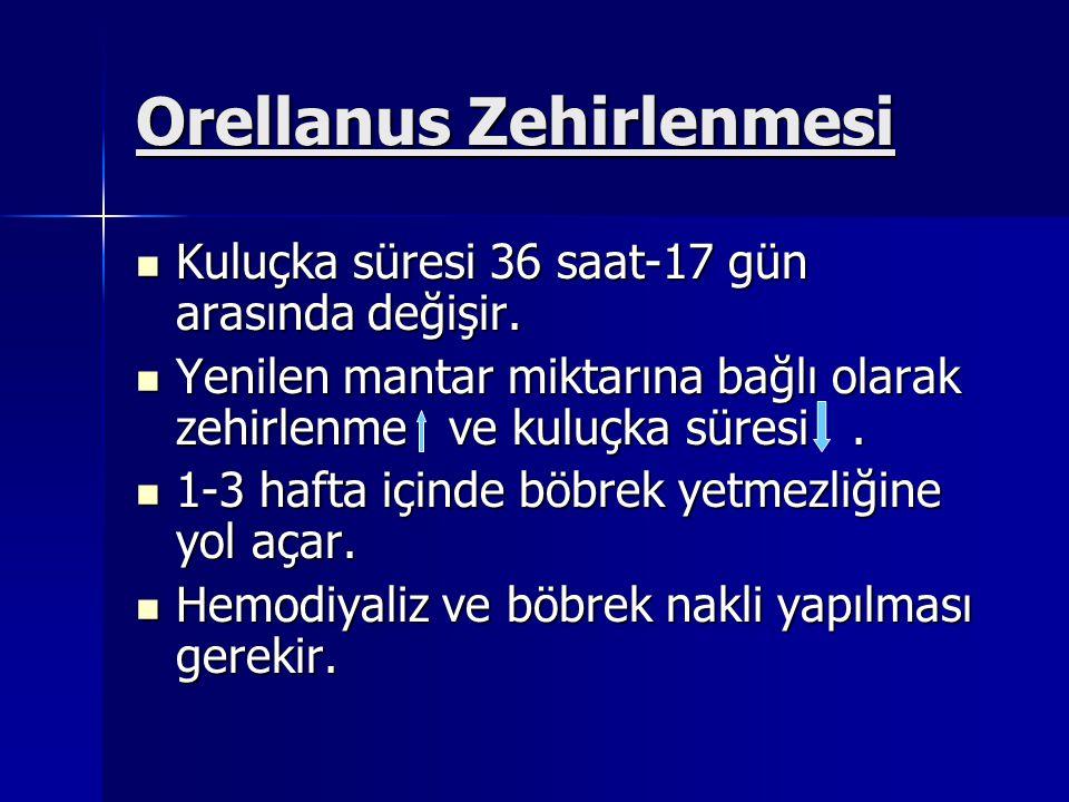 Orellanus Zehirlenmesi Kuluçka süresi 36 saat-17 gün arasında değişir.