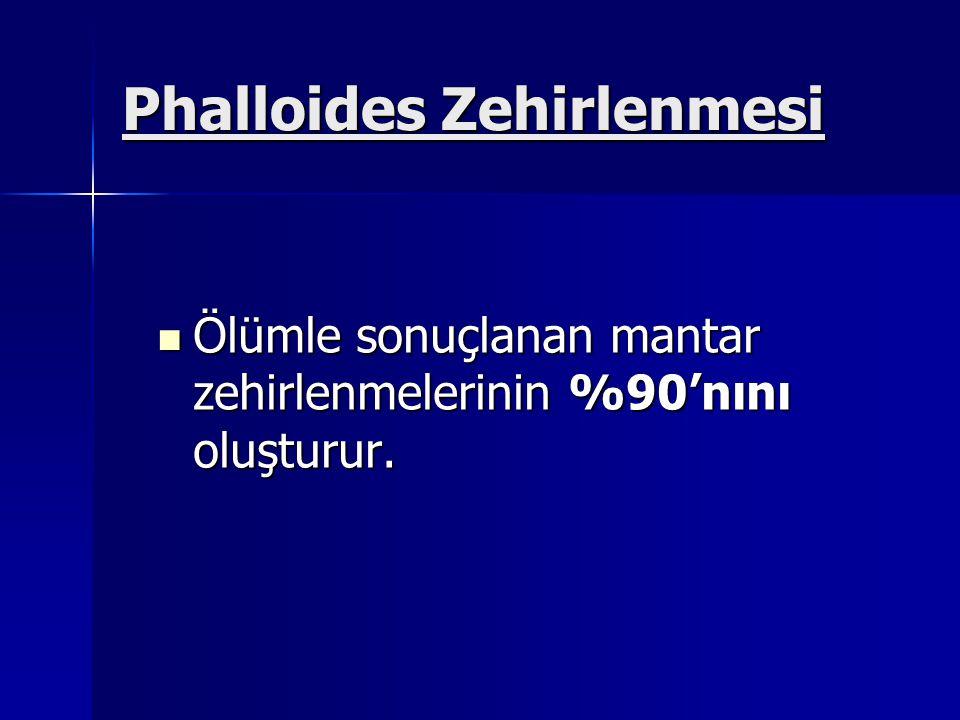 Phalloides Zehirlenmesi Ölümle sonuçlanan mantar zehirlenmelerinin %90'nını oluşturur.