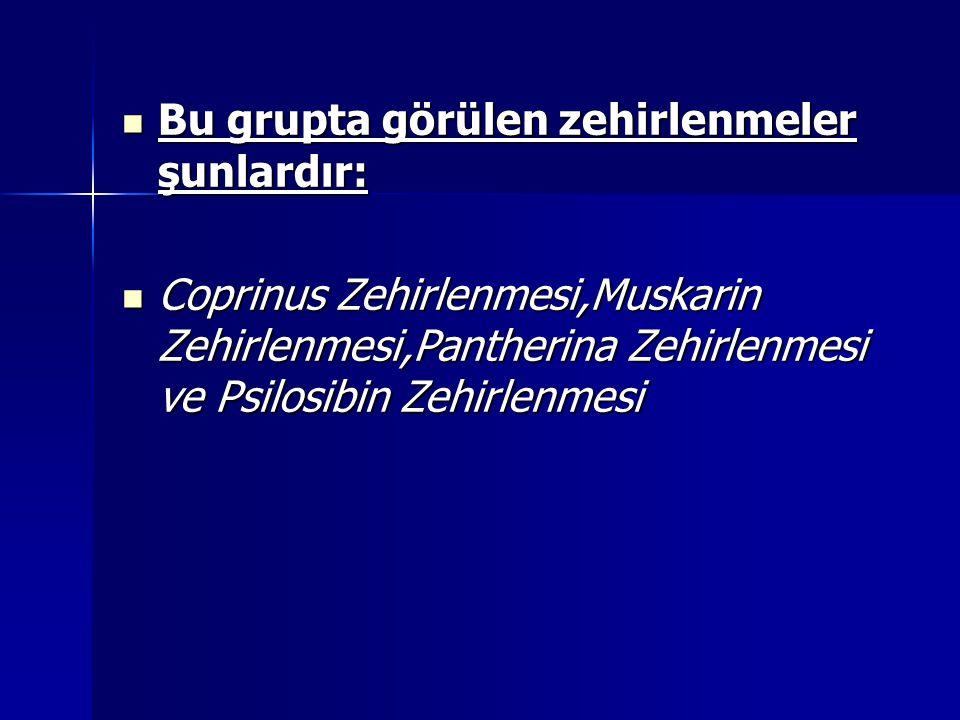Bu grupta görülen zehirlenmeler şunlardır: Bu grupta görülen zehirlenmeler şunlardır: Coprinus Zehirlenmesi,Muskarin Zehirlenmesi,Pantherina Zehirlenmesi ve Psilosibin Zehirlenmesi Coprinus Zehirlenmesi,Muskarin Zehirlenmesi,Pantherina Zehirlenmesi ve Psilosibin Zehirlenmesi