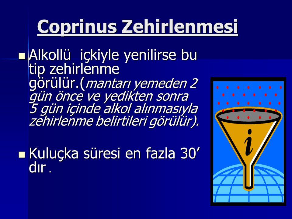 Coprinus Zehirlenmesi Alkollü içkiyle yenilirse bu tip zehirlenme görülür.( mantarı yemeden 2 gün önce ve yedikten sonra 5 gün içinde alkol alınmasıyla zehirlenme belirtileri görülür).