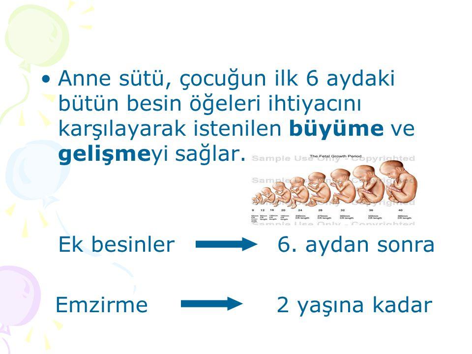Anne sütü, çocuğun ilk 6 aydaki bütün besin öğeleri ihtiyacını karşılayarak istenilen büyüme ve gelişmeyi sağlar. Ek besinler 6. aydan sonra Emzirme 2