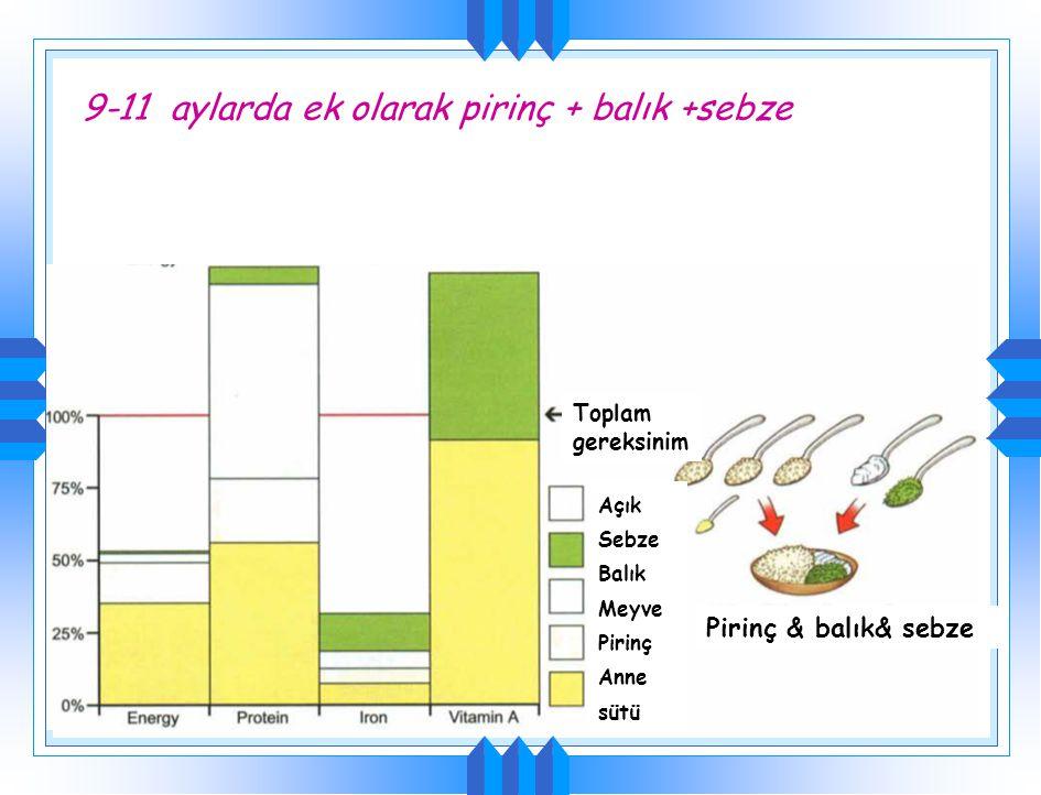9-11 aylarda ek olarak pirinç + balık Toplam gereksinim Pirinç & balık Açık Balık Meyve Pirinç Anne sütü