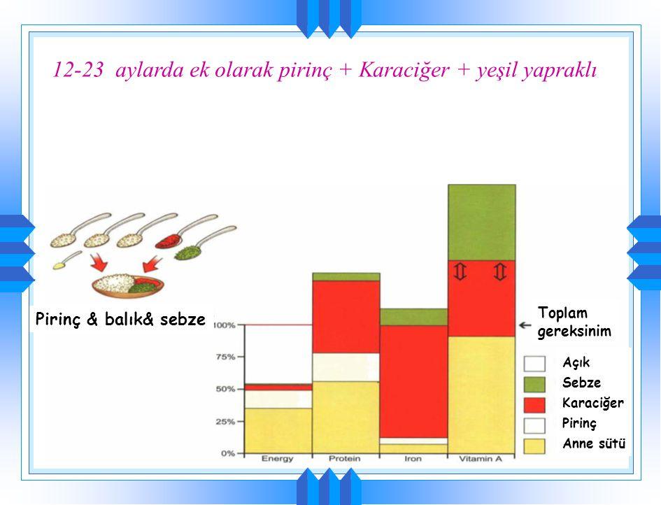  Gelecekteki beslenme alışkanlığının büyük oranda belirlendiği dönem  Beslenme alışkanlığının gelişmesinde temel olarak ailenin ve aile mutfağının b