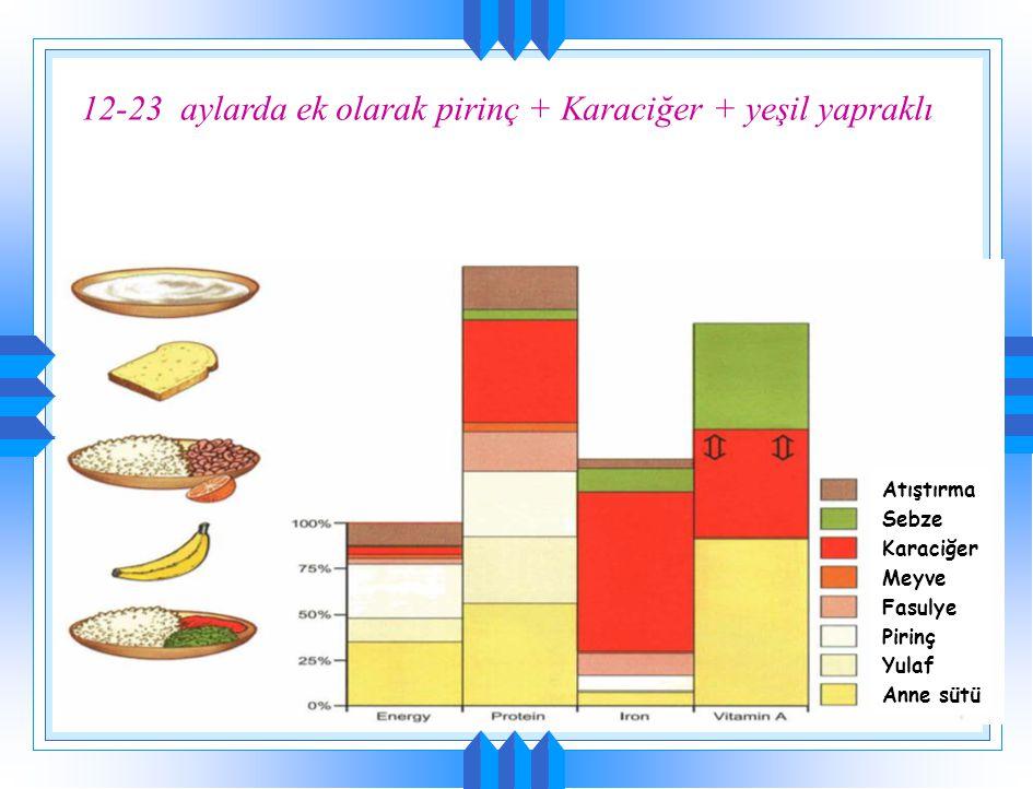 12-23 aylarda ek olarak pirinç + Karaciğer + yeşil yapraklı Açık Sebze Karaciğer Meyve Fasulye Pirinç Yulaf Anne sütü