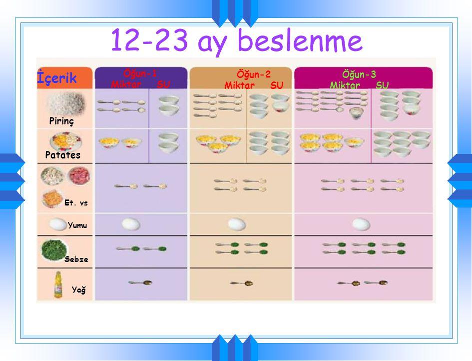 12-23 aylarda ek olarak pirinç + Karaciğer + yeşil yapraklı Atıştırma Sebze Karaciğer Meyve Fasulye Pirinç Yulaf Anne sütü