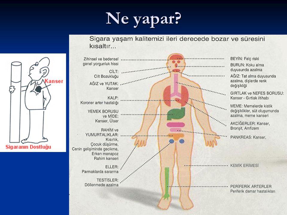 Sigarada ne var? Sigara, pipo yada puro içen biri her nefesle ciğerine 4000 kimyasal madde çeker. Bu maddelerden en bilinenleri: aseton, amonyak, benz