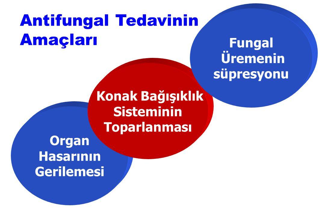 Organ Hasarının Gerilemesi Konak Bağışıklık Sisteminin Toparlanması Fungal Üremenin süpresyonu Antifungal Tedavinin Amaçları